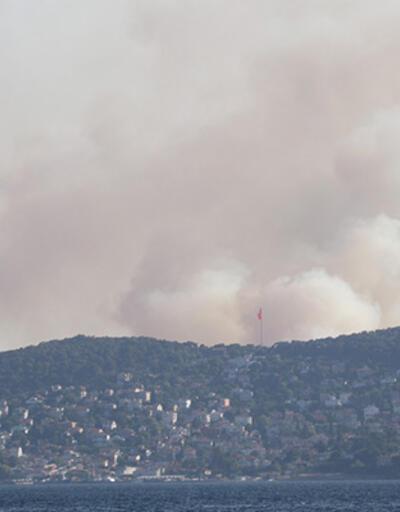 MSB'den Heybeliada'daki orman yangınına ilişkin açıklama