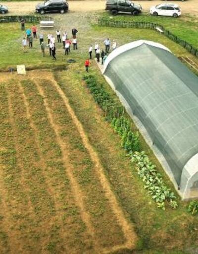 Karadeniz Ereğli belediyesi ata tohumlarıyla üretim yaptı