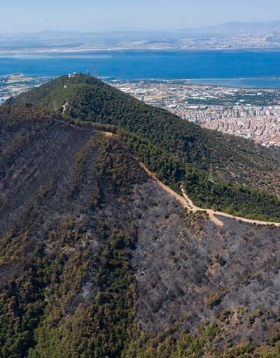 İzmir'de dün yanan orman alanı havadan görüntülendi