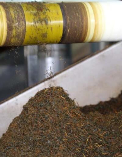 Paketi açar açmaz ortaya çıkıyor! Kaliteli çay nasıl anlaşılır?