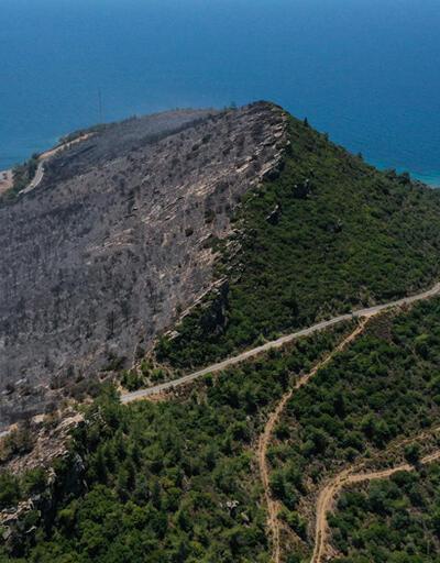 Son dakika... Menderes'teki orman yangınıyla ilgili gözaltına alınan şüpheli tutuklandı