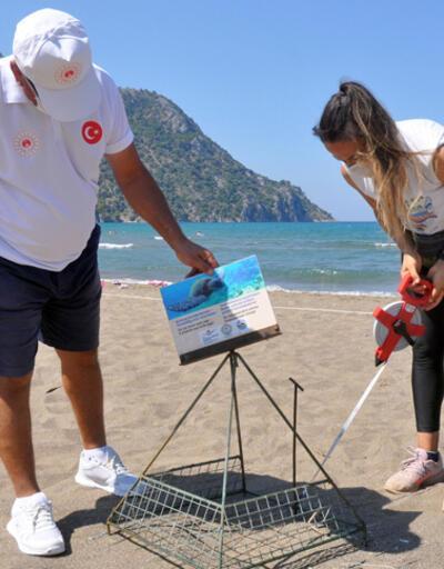 Son dakika... İztuzu Plajı'nda caretta caretta yuvası rekoru kırıldı