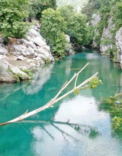 Mavi ve yeşilin buluştuğu yer