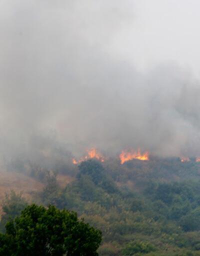 Bulgaristan sınırında orman yangını! Alevler Türkiye'ye doğru ilerliyor