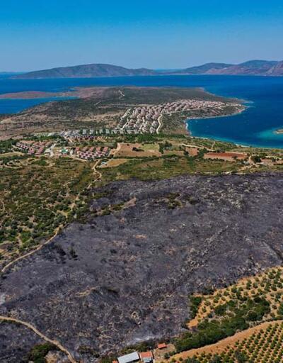 İzmir'in Çeşme ilçesindeki yangında zarar gören alanlar havadan görüntülendi