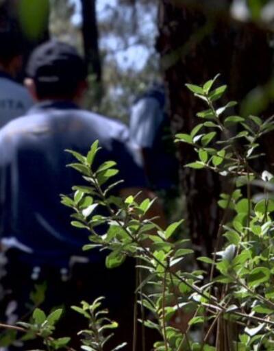 Aydos'ta drone ile mangal denetimi | Video