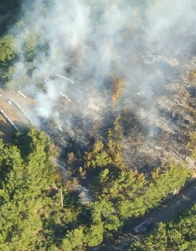 İzmir'de, ormanlık alanda çıkan yangın kontrol altına alındı