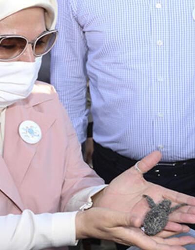 Emine Erdoğan kaplumbağaları denize uğurladı | Video