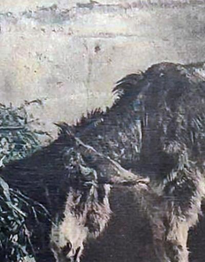 Piyasa değeri milyon dolarlarla ölçülüyor! 149 yıllık tablo Muğla'da ele geçirildi
