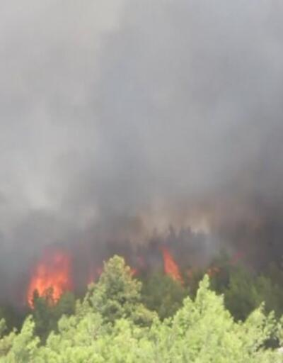 Antalya'da orman yangınları | Video