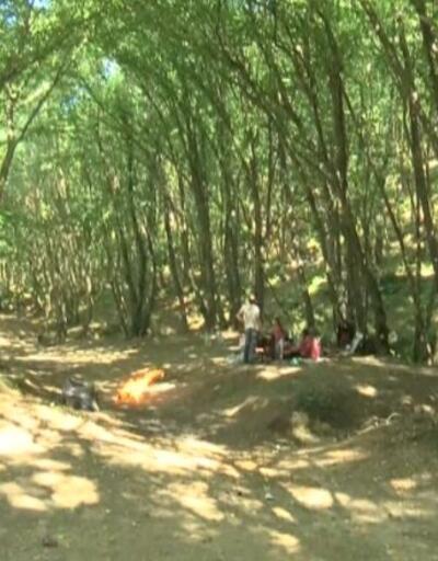 Yasak alanda mangal yaktılar | Video