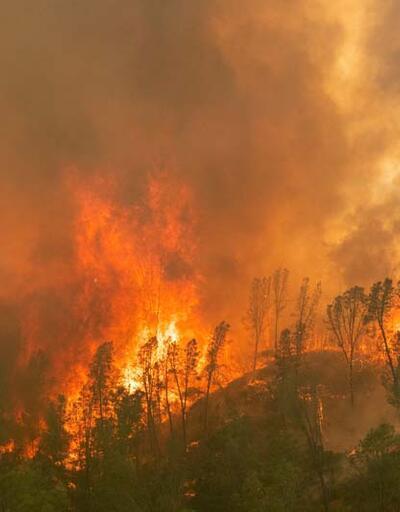 Son dakika... ABD'de devam eden yangınlar haftalarca sürebilir