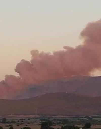 İzmir'de ormanlık alanda çıkan yangın kontrol altına alındı