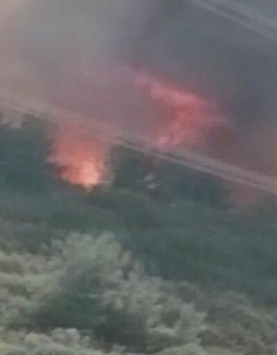 Haberler... Gelibolu'da orman yangınında son dakika: Ekiplerin müdahalesi sürüyor | Video