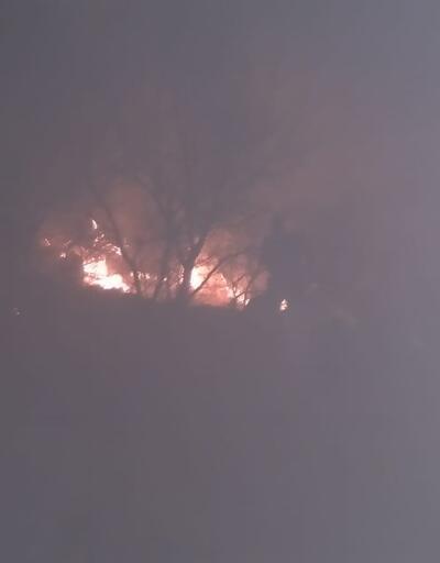 Son dakika haberi: Ankara'da orman yangını!