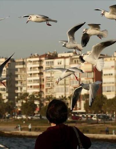 Türkiye'de en pahalı ve en ucuz konutlar hangi illerde? İşte dev liste...