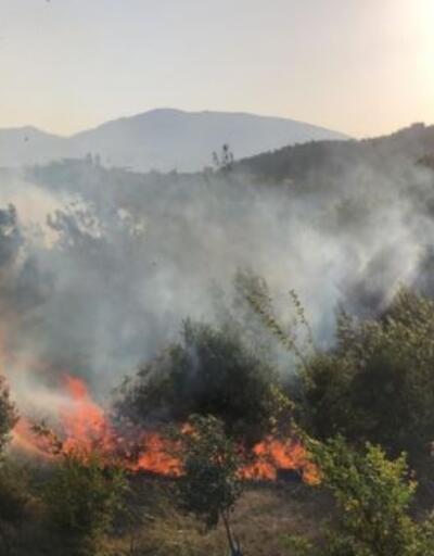 """Son dakika haberi... Hatay'daki orman yangını kontrol altına alındı! """"Çok ciddi kasıt şüpheleri ortaya çıktı"""""""