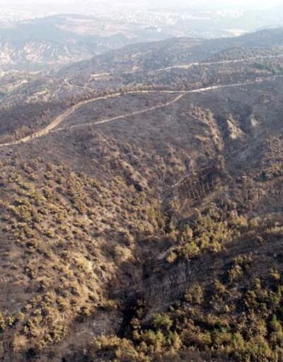 Son dakika... Hatay'da yanan ormanlık alan, havadan görüntülendi