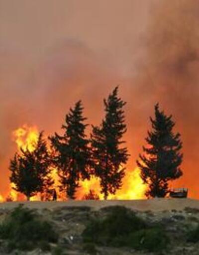 Adana'daki orman yangınlarıyla ilgili 4 kişi yakalandı