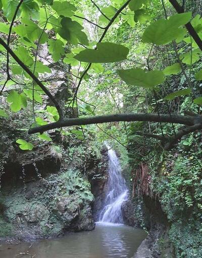 Doğa harikası 3 şelale turizme kazandırılacak