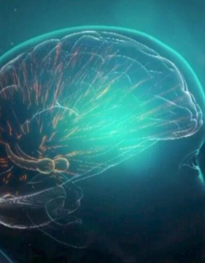 Gelecekteki yeni tehlike: Alzheimer | Video
