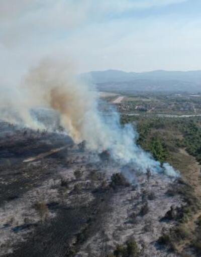 Kızılırmak Deltası'ndaki yangın kundaklama sonucu çıkmış