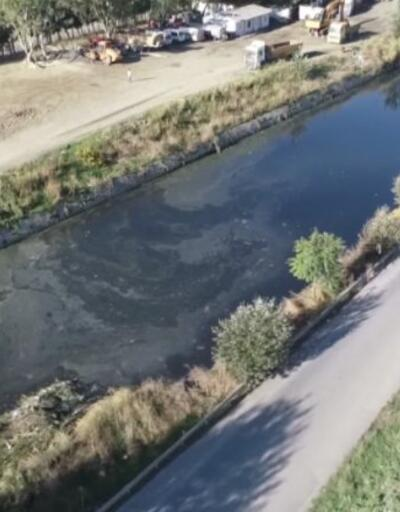 Ayamama Deresi'nde kirlilik   Video