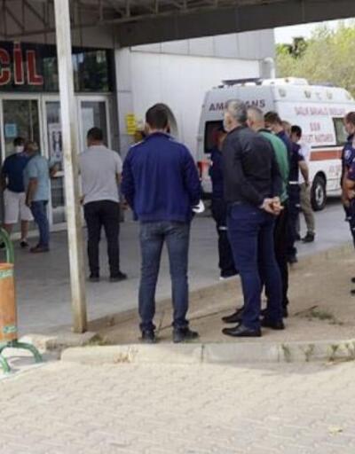 Zabıta müdürü, tartıştığı seyyar satıcı tarafından bıçaklandı