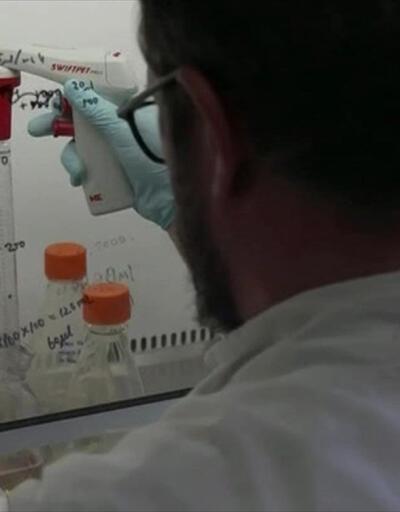 Koronavirüs antikorları azaltıyor   Video