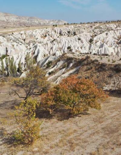 Kapadokya'dan sonbahar manzaraları