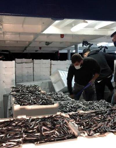 Balıkçılar yüzlerce kasa hamsiyle döndü