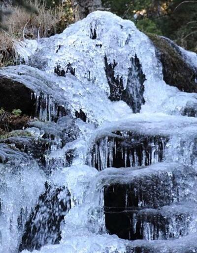 Bolu'da ilkbaharın coşkun şelaleleri buz tuttu | Video
