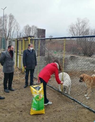 Öğrencilerden barınaktaki köpeklere mama desteği