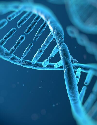 DNA'daki 5 genin koronavirüs ile bağlantısı ortaya çıktı