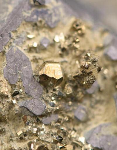 Büyük heyecan: 6 milyar dolarlık altın burada bulundu!