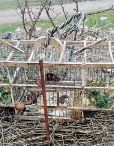 Saka kuşu avlayan 2 kişiye 8 bin 300 lira ceza