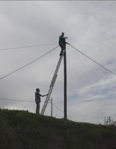 Kablolara hırsızlar dadandı | Video