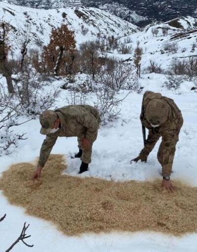 Jandarma yaban hayvanları için doğaya yem bıraktı