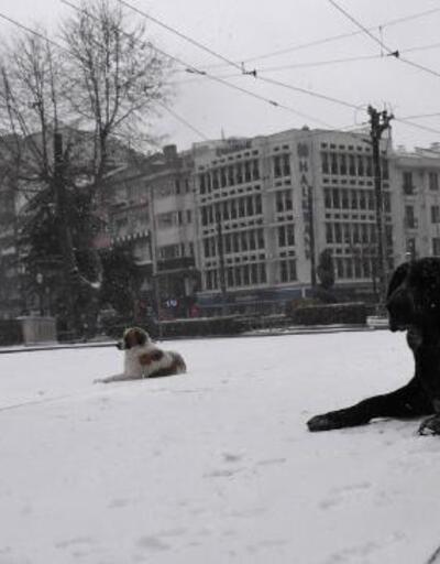 Eskişehir'de sokaklar beyaza büründü