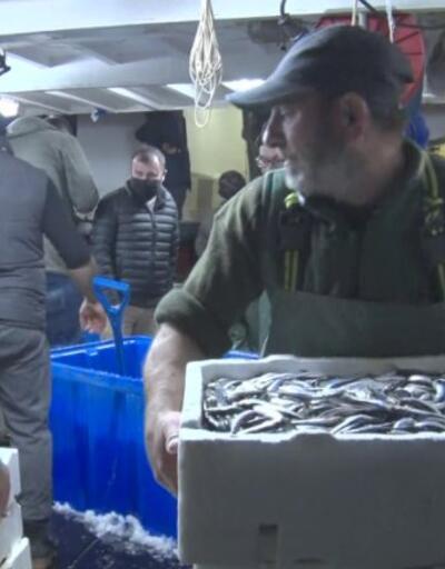 Son dakika: Av yasağı kalktı, ilk hamsiler balık haline geldi