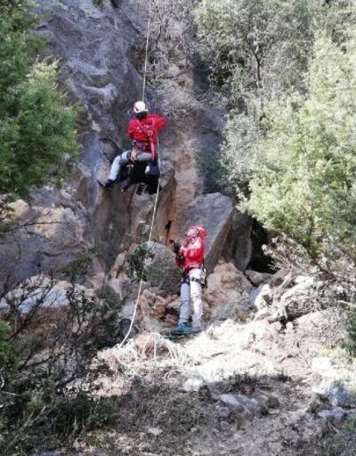 Kayalıklarda mahsur kalan keçi, AKUT ekibi tarafından kurtarıldı