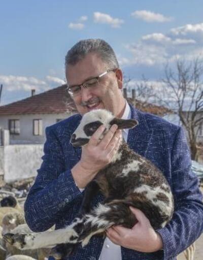 Karacabey Belediye Başkanı Özkan'dan sokak hayvanlarına duyarlılık çağrısı