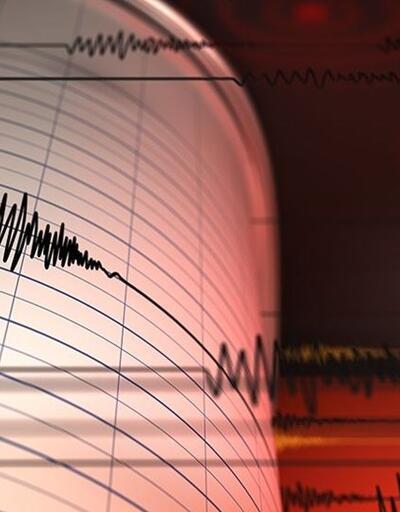 Yeni Zelanda açıklarında 7.3'lük deprem