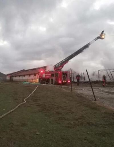 Ahırda çıkan yangını itfaiye ekipleri söndürdü