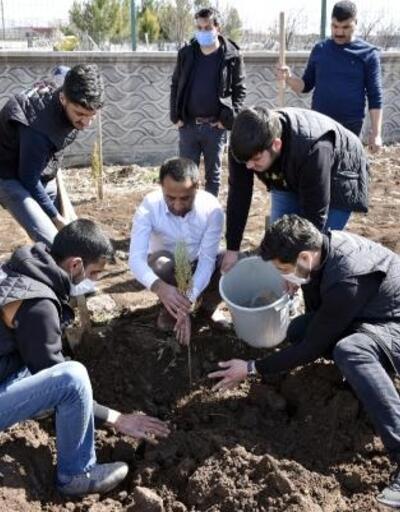 Servis çalışanları okul bahçesini ağaçlandırdılar