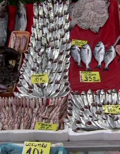 Balık fiyatları ne durumda?