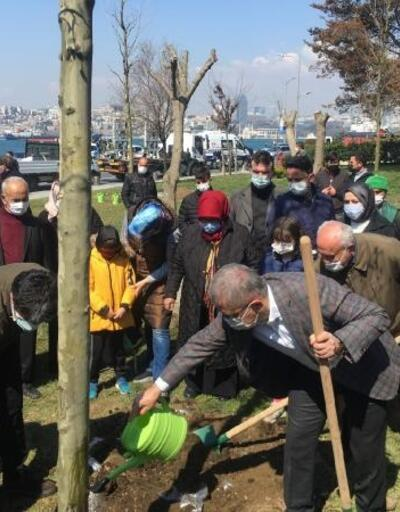 Üsküdar'da izinsiz kesilen ağaçların yerine yenisini 'çınarlar' dikti