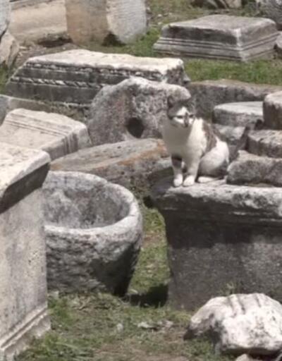2200 yıllık antik kent
