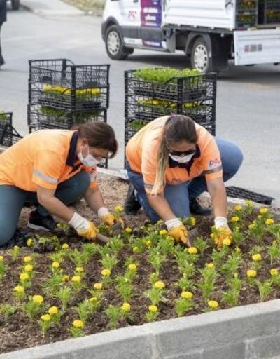 Büyükşehir ekipleri iki mahallede 15 bin bitkiyi toprakla buluşturdu