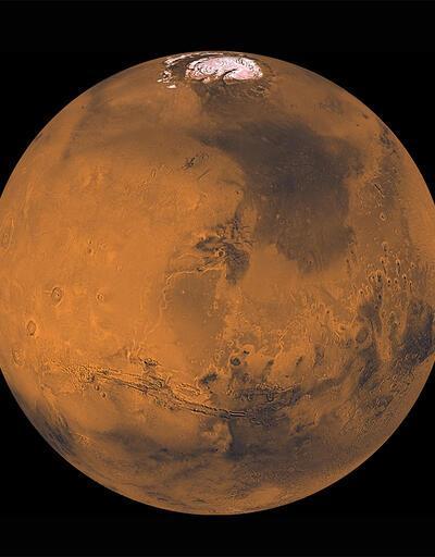 """Elon Musk'tan Mars açıklaması: """"Gidenlerden bazıları muhtemelen ölecek"""""""